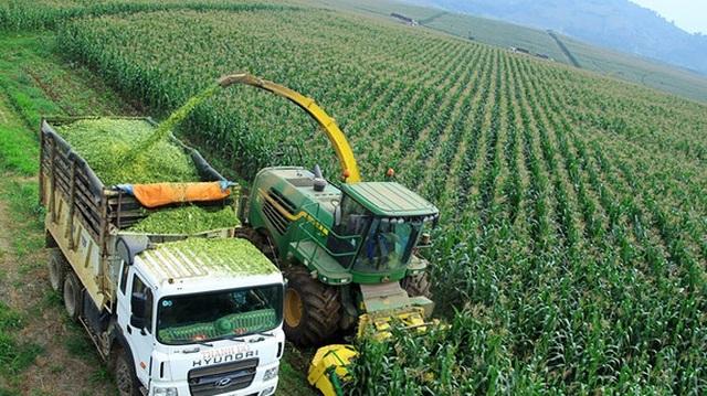 Bất động sản nông nghiệp: Cơ hội cho thị trường còn đang bỏ ngỏ - 2