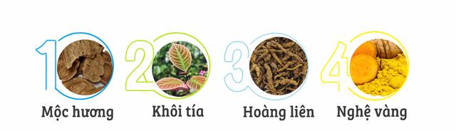 TPBVSK Dạ Tràng An Khang – Niềm tin vững chắc cho người bị đau dạ dày - 1