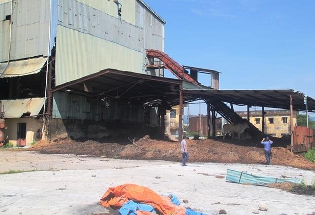 Vụ hơn 300 công nhân bị nợ lương: Hoang tàn nhà máy trăm tỷ chờ bán sắt vụn - 10