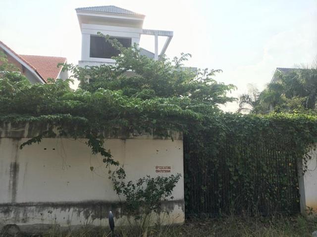 Cảnh ám ảnh trong biệt thự tiền tỷ, cỏ mọc um tùm ở Sài Gòn - 2