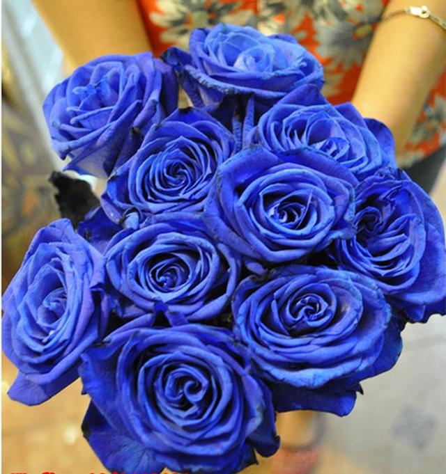 """Hoa hồng xanh nhập khẩu vài trăm ngàn đồng/bông, không vào dịp lễ cũng """"cháy hàng"""" - 2"""