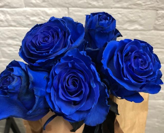 """Hoa hồng xanh nhập khẩu vài trăm ngàn đồng/bông, không vào dịp lễ cũng """"cháy hàng"""" - 3"""