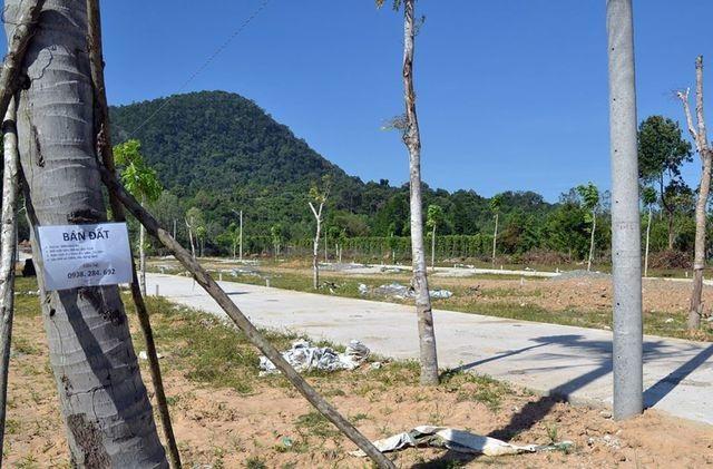 Bộ Kế hoạch: Cần cấm người Việt đứng tên hộ người Trung Quốc mua đất đai - 1