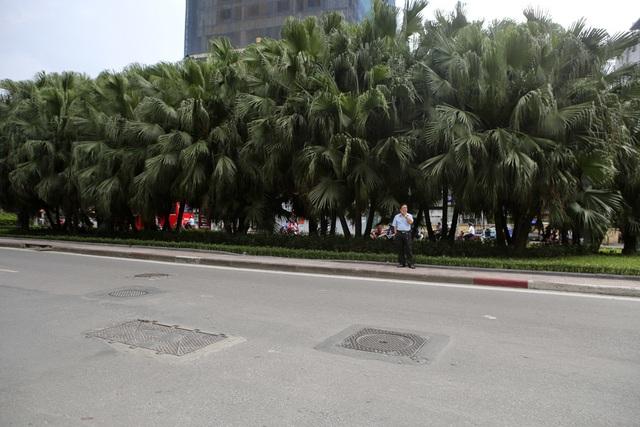 Những dải phân cách xanh mướt bóng cây ở Hà Nội - 15