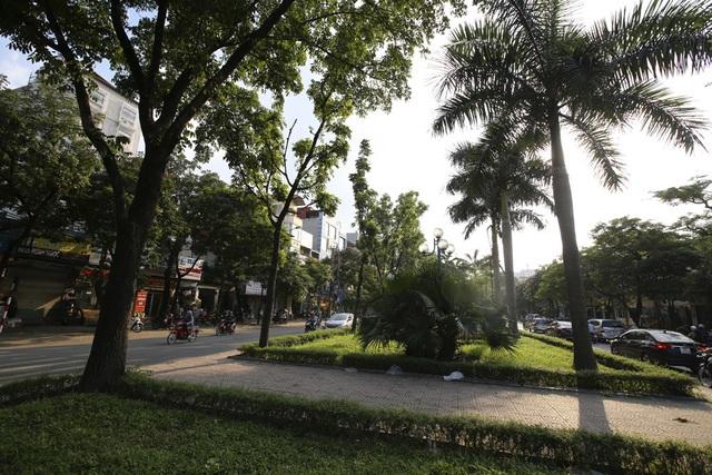 Những dải phân cách xanh mướt bóng cây ở Hà Nội - 2