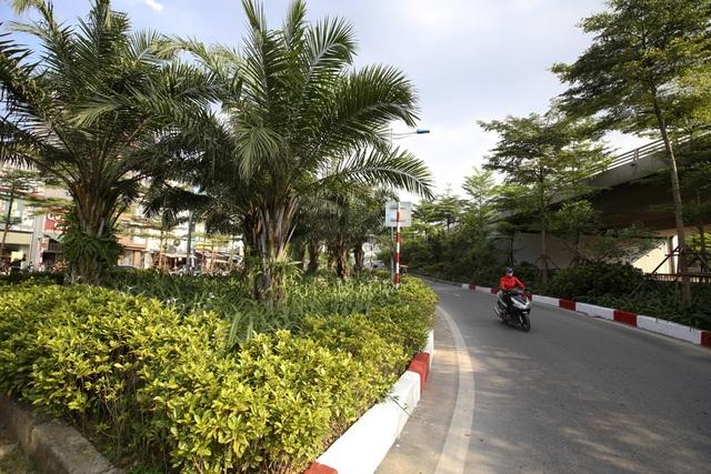Những dải phân cách xanh mướt bóng cây ở Hà Nội - 4