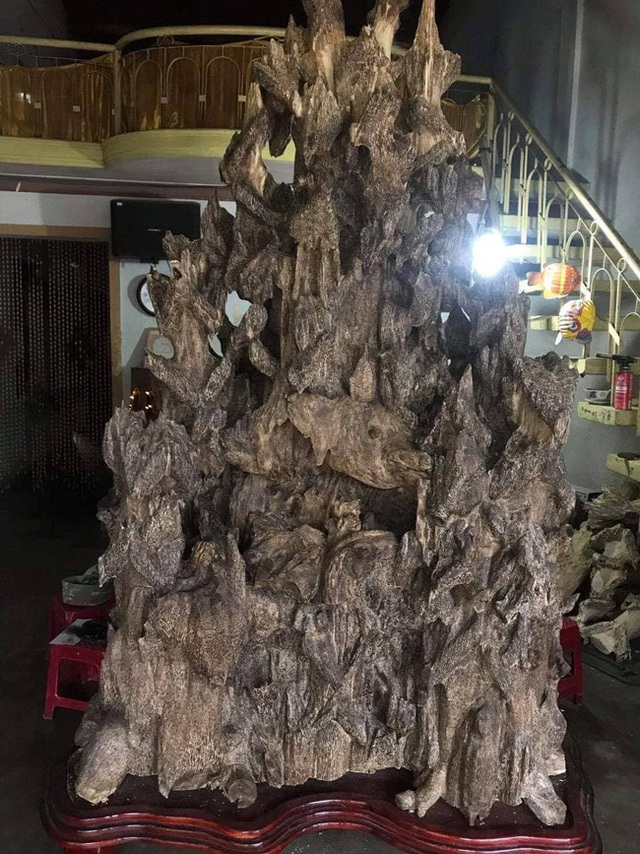 Lặn lội hơn 20 năm, đại gia Hà thành tốn hàng đống tiền để có bộ sưu tập từ gỗ trầm lũa - 3