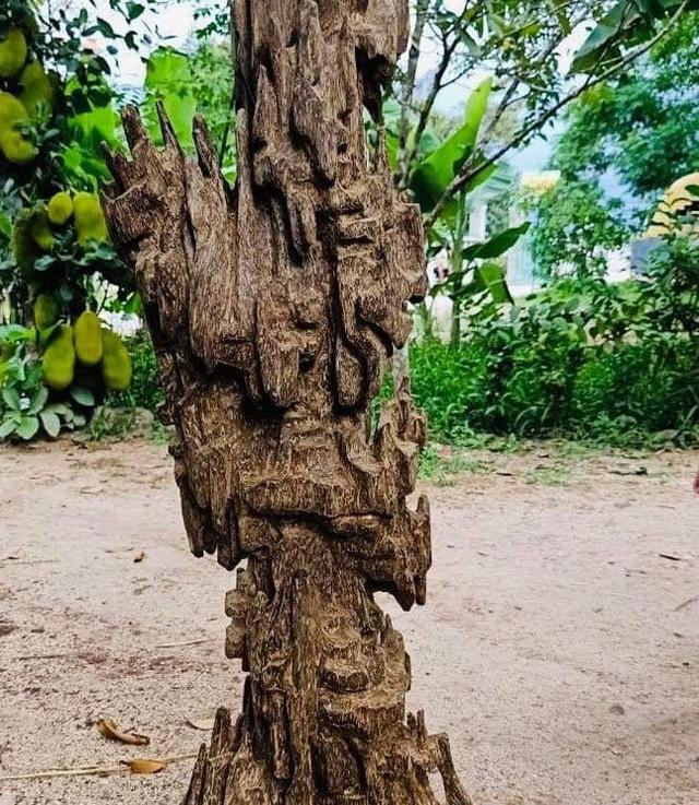 Lặn lội hơn 20 năm, đại gia Hà thành tốn hàng đống tiền để có bộ sưu tập từ gỗ trầm lũa - 8