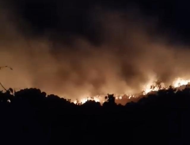 Cháy lớn trên bán đảo Sơn Trà - 1