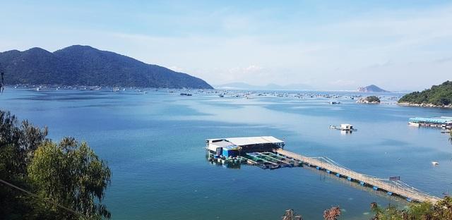Phú Yên: Vịnh Vũng Rô đang chết dần chết mòn vì rác thải nhựa! - 1