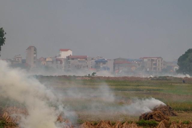 Nhiều tuyến đường ngoại thành Hà Nội mù mịt khói rơm rạ - 7