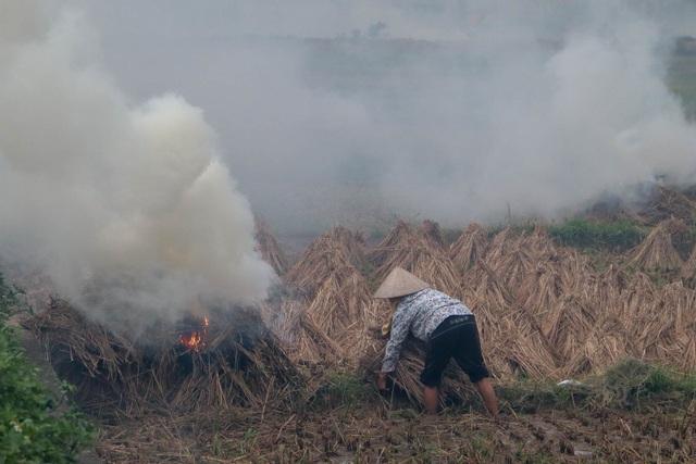 Nhiều tuyến đường ngoại thành Hà Nội mù mịt khói rơm rạ - 2