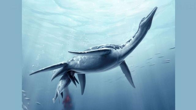 Phát hiện hóa thạch khủng long giống quái vật hồ Loch Ness ngoài đời thực - 1