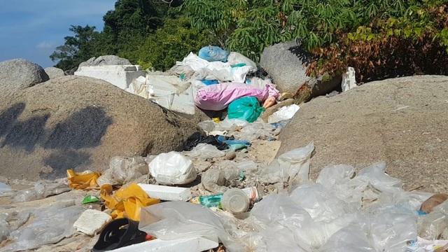 Phú Yên: Vịnh Vũng Rô đang chết dần chết mòn vì rác thải nhựa! - 5