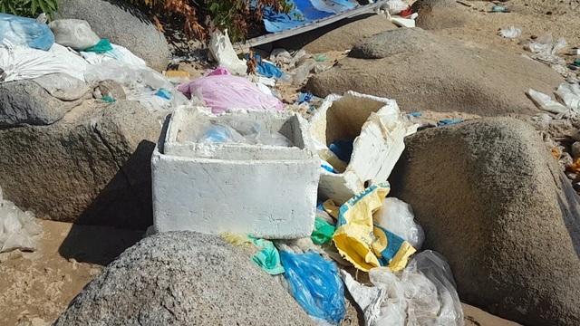 Phú Yên: Vịnh Vũng Rô đang chết dần chết mòn vì rác thải nhựa! - 6