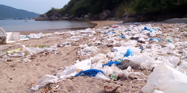 Phú Yên: Vịnh Vũng Rô đang chết dần chết mòn vì rác thải nhựa! - 3