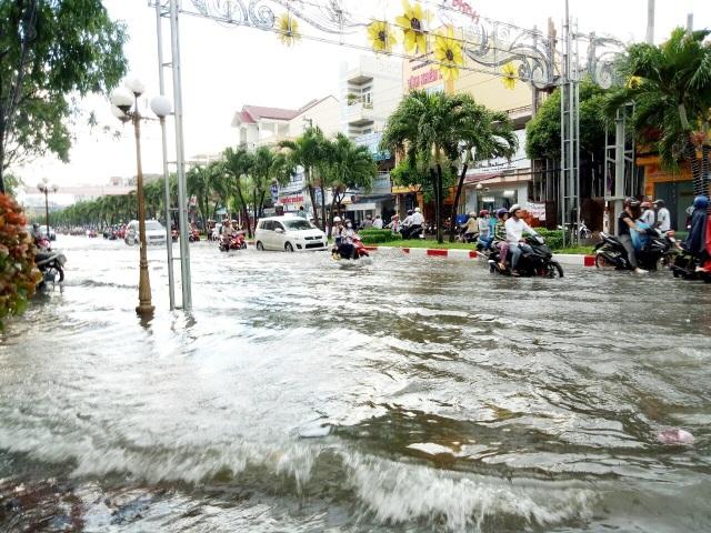 Đường phố Bạc Liêu biến thành sông sau trận mưa lớn - 3