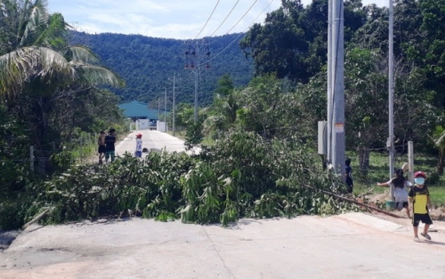 Cư dân đảo ngọc Phú Quốc lại chặt cây ngăn đường chặn xe rác - 2