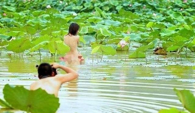 Chấn chỉnh việc ăn mặc phản cảm chụp ảnh tại các hồ sen - 3