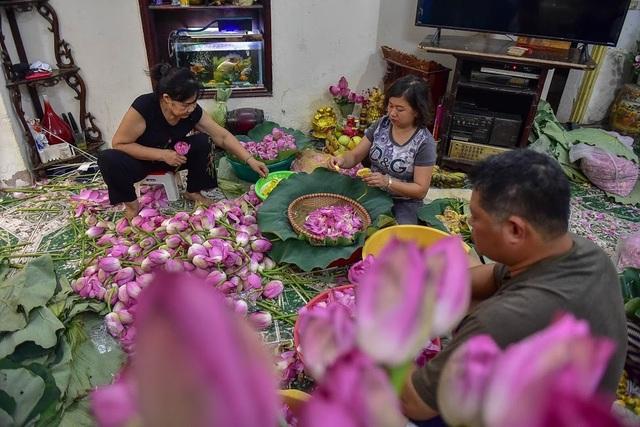 Đệ nhất trà Hà Nội: Làm từ 1000 bông sen, bán giá đắt như vàng - 2