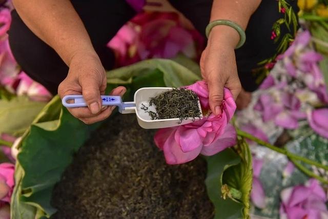 Đệ nhất trà Hà Nội: Làm từ 1000 bông sen, bán giá đắt như vàng - 14