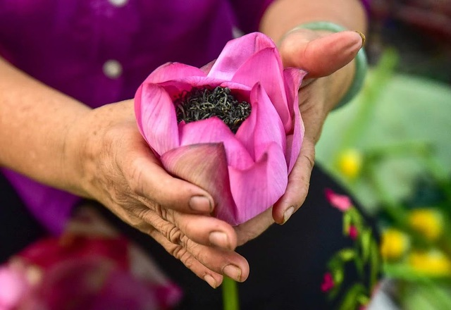 Đệ nhất trà Hà Nội: Làm từ 1000 bông sen, bán giá đắt như vàng - 15