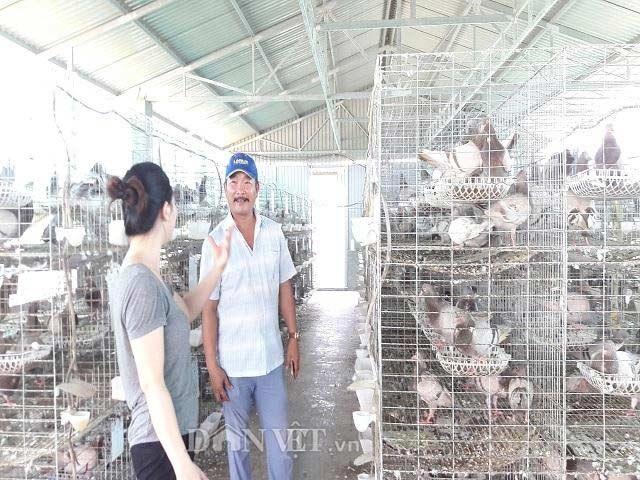 Hà Tĩnh:  Xây lầu cho chim ở, mỗi tháng bỏ túi hơn 20 triệu đồng. - 4