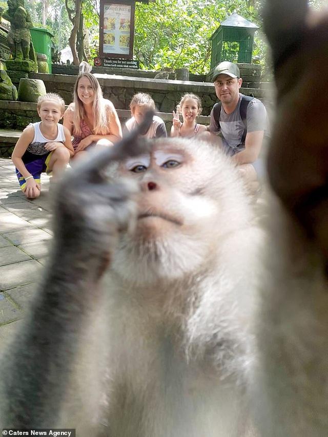 Đi nghỉ mát, gia đình được khỉ chụp tự sướng ấn tượng như người - 1