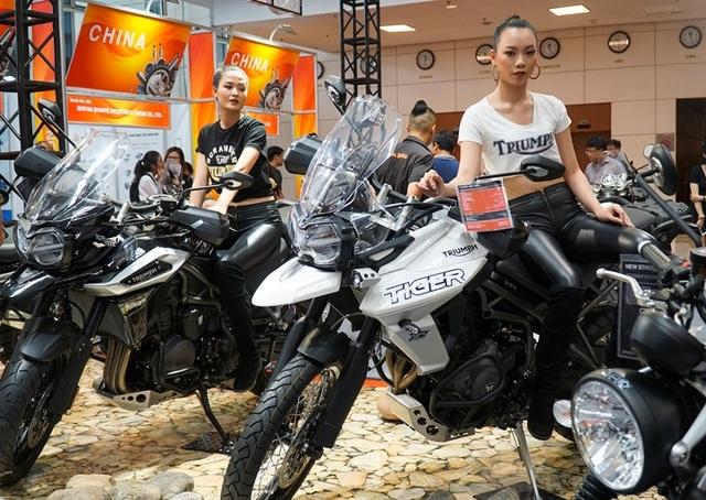 """Ngắm những người mẫu xinh đẹp bên môtô """"khủng"""" tại Vietnam AutoExpo 2019 - 6"""
