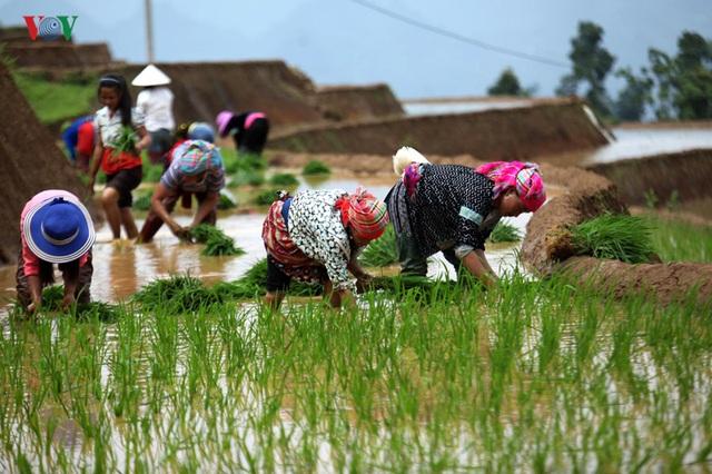 Mùa nước đổ Lai Châu làm xiêu lòng du khách - 2