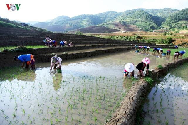 Mùa nước đổ Lai Châu làm xiêu lòng du khách - 3