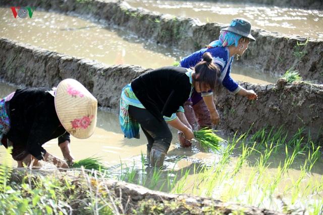Mùa nước đổ Lai Châu làm xiêu lòng du khách - 5