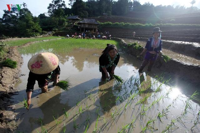 Mùa nước đổ Lai Châu làm xiêu lòng du khách - 6