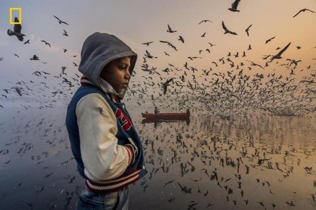 Chìm đắm trong những pô ảnh đầy mê hoặc tại cuộc thi ảnh quốc tế - 17
