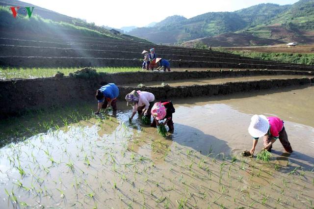 Mùa nước đổ Lai Châu làm xiêu lòng du khách - 9