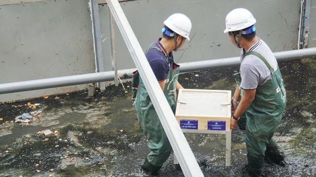 Xem màn trình diễn biến bùn thành CO2 và nước trên sông Tô Lịch - 9