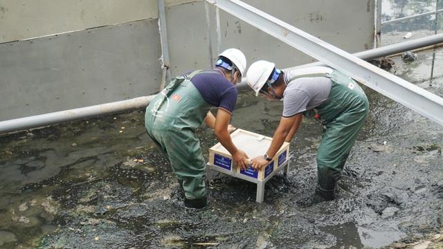 Xem màn trình diễn biến bùn thành CO2 và nước trên sông Tô Lịch - 10