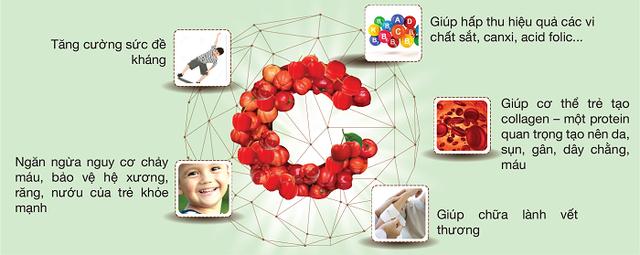 CNattu kids từ Vitamin C tự nhiên và Rutin tự nhiên có công dụng như thế nào? - 1