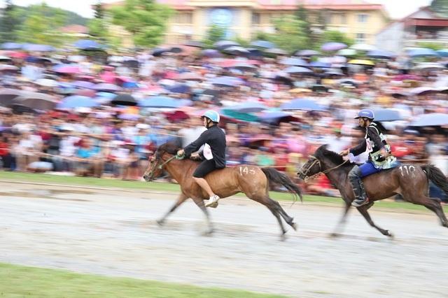 Thêm một giải đua ngựa độc đáo trên miền cao Tây Bắc - 1