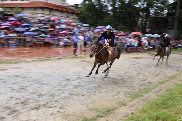 Thêm một giải đua ngựa độc đáo trên miền cao Tây Bắc - 3