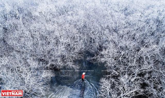 Phong cảnh Việt Nam - những bức hình tuyệt đẹp nhìn từ trên cao - 11