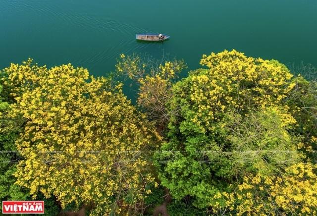 Phong cảnh Việt Nam - những bức hình tuyệt đẹp nhìn từ trên cao - 7