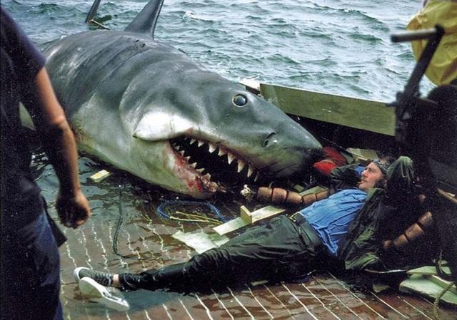 """Một số bức ảnh lần đầu công bố về phim trường """"Hàm cá mập"""" - 6"""