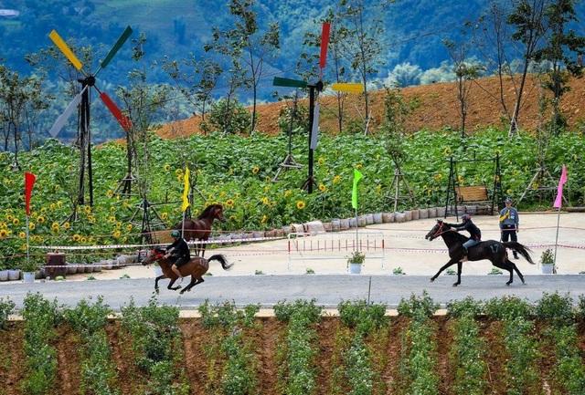 Hàng ngàn du khách đổ về Sa Pa tham dự lễ hội đua ngựa Vó ngựa trên mây - 2