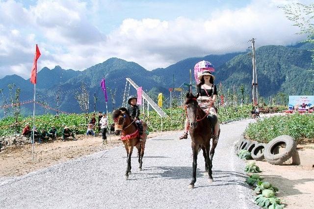 Hàng ngàn du khách đổ về Sa Pa tham dự lễ hội đua ngựa Vó ngựa trên mây - 7