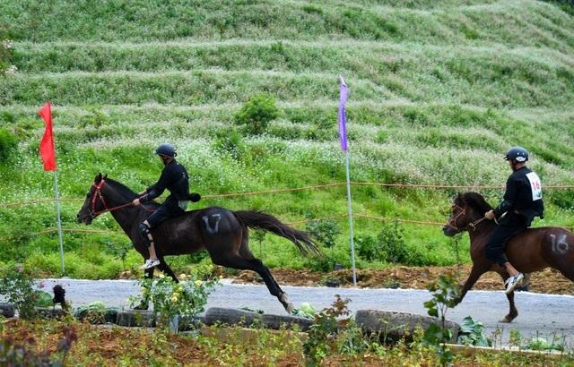 Hàng ngàn du khách đổ về Sa Pa tham dự lễ hội đua ngựa Vó ngựa trên mây - 8