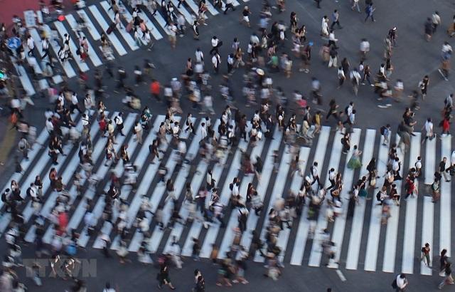Nhật Bản xem xét tăng tuổi nghỉ hưu của người lao động ở tuổi 70 - 1