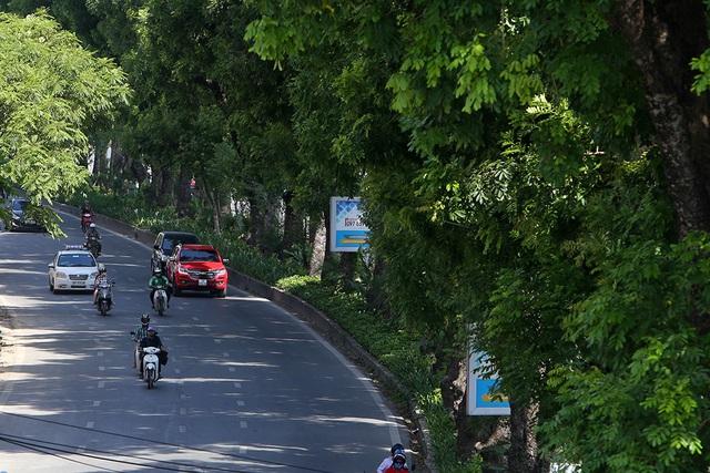 Bóng mát quý giá trên đường phố Hà Nội ngày nóng đỉnh điểm - 1