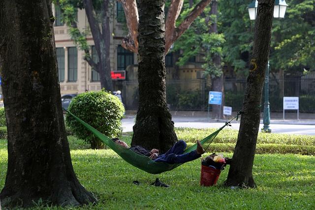 Bóng mát quý giá trên đường phố Hà Nội ngày nóng đỉnh điểm - 15