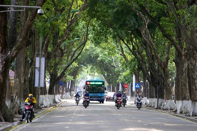 Bóng mát quý giá trên đường phố Hà Nội ngày nóng đỉnh điểm - 8